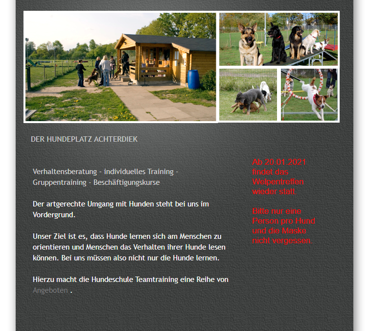 Hundeschule Teamtraining Bremen web 1.0